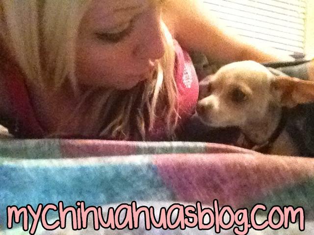 Me and my tan and white chihuahua Neva