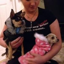 Puppy Jackets