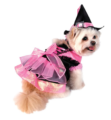 Pink Witch Dog Costume