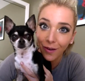 Mr. Marbles the chihuahua dog.  Jenna Marbles.
