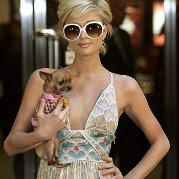 Paris Hilton with her Chihuahua, Tinkerbell.